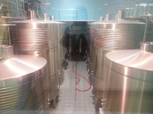 The state-of-the-art modern winery - and my ghostly reflection.