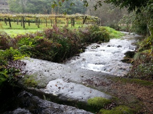 The Armenteira river which drove the mills