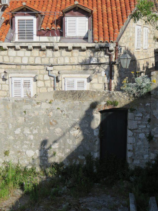 Shadow wall walkers